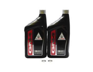2006-2020 Honda Sportrax 250 TRX250EX EX SE 2x4 OEM Oil Change Kit